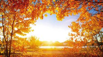 Kingspan_Daylite_Brochure_022016_CEER