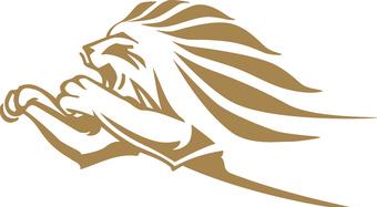 Kingspan Lion